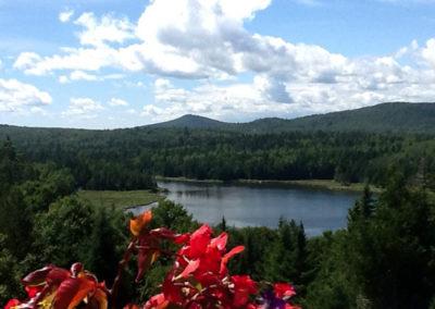 Sam Orr's Pond Nature Trail